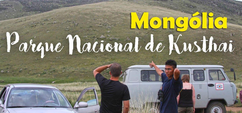 Visitar o PARQUE NACIONAL DE KUSTHAI e ver os cavalos mongóis | Mongólia