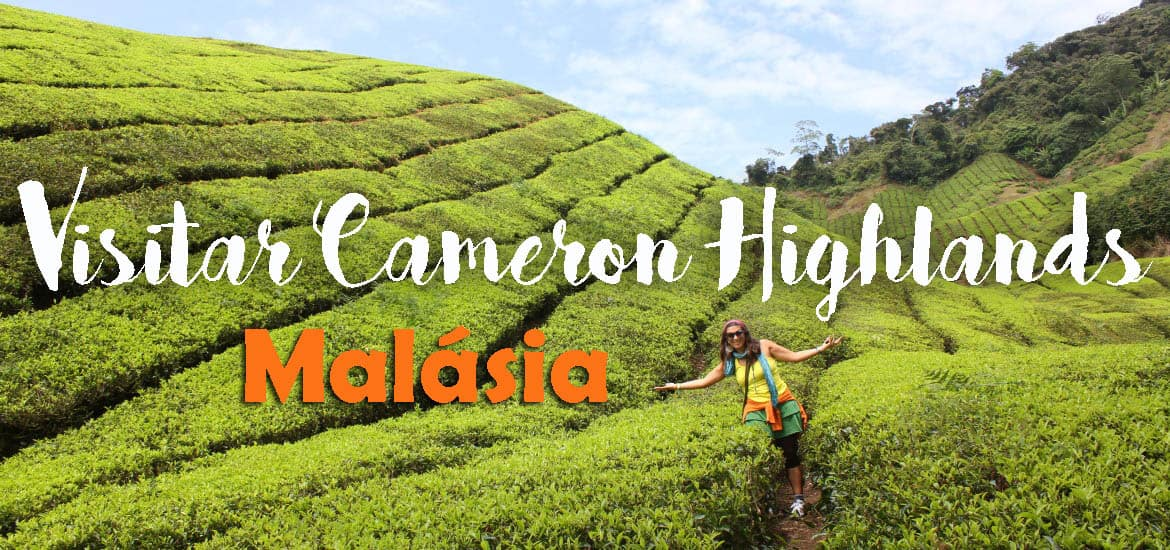 Visitar as CAMERON HIGHLANDS, as montanhas tropicais | Malásia