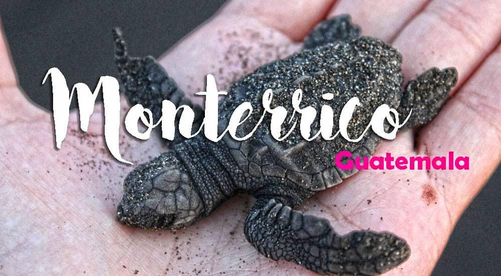 Procurando tartarugas em MONTERRICO, uma das mais belas praias da Guatemala | Guatemala