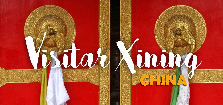 Visitar XINING e mosteiro de Kumbum - Da lama nasce a flor de lótus | China
