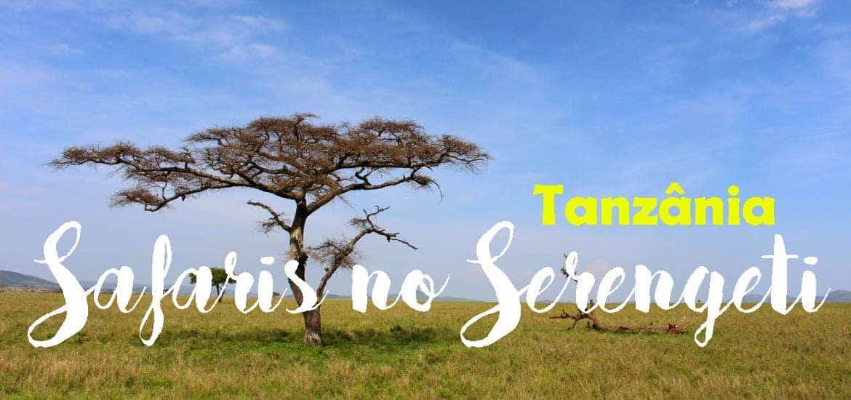 SERENGETI - Fazer safari para ver a vida selvagem e savana, Tanzânia