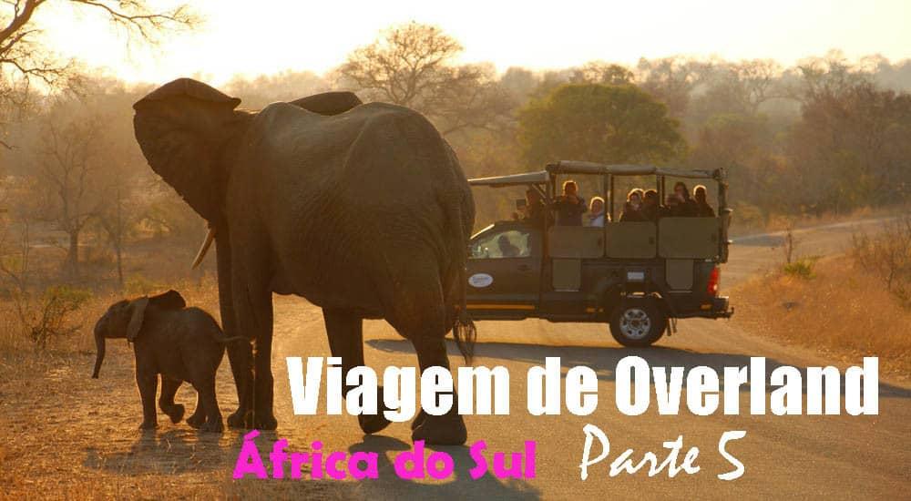 VIAGEM DE OVERLAND - Parte 5 - De Joanesburgo ao Parque Nacional de Kruger | África do Sul