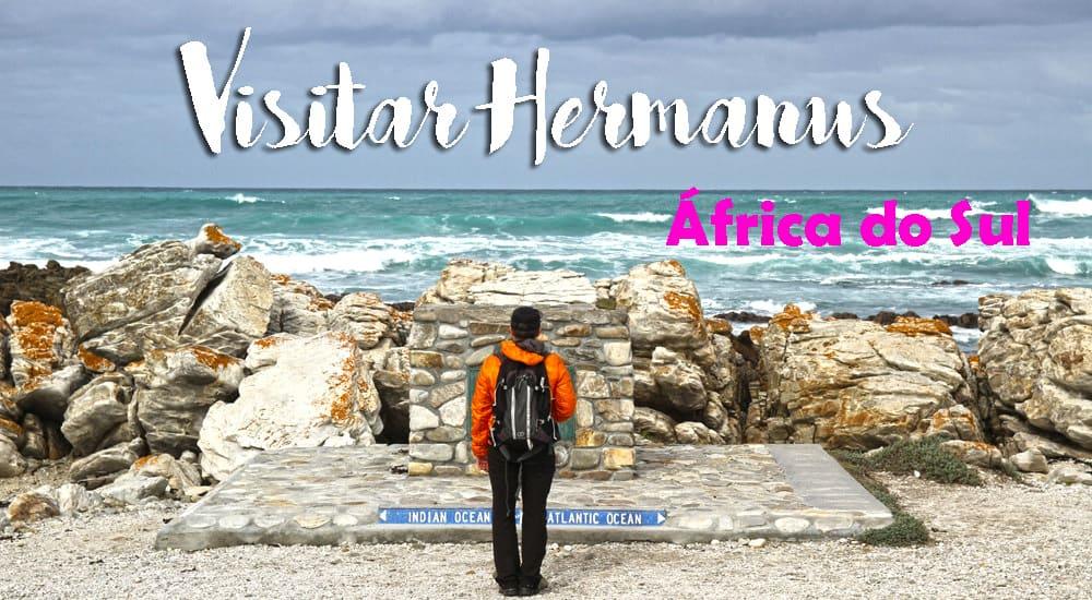 DICAS de viagem em HERMANUS | África do Sul