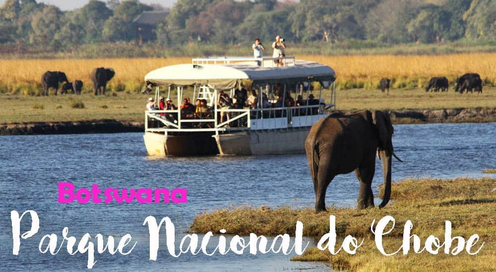 Safari no PARQUE NACIONAL DO CHOBE, um paraíso selvagem do jipe e do barco | Botswana