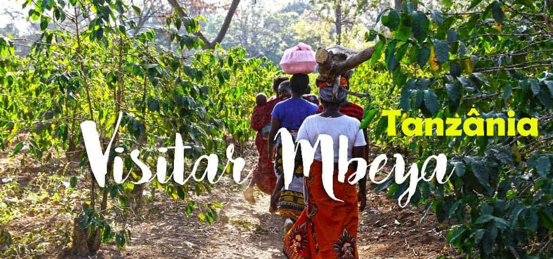 MBEYA, visitar o mundo do café da África Oriental na Tanzânia