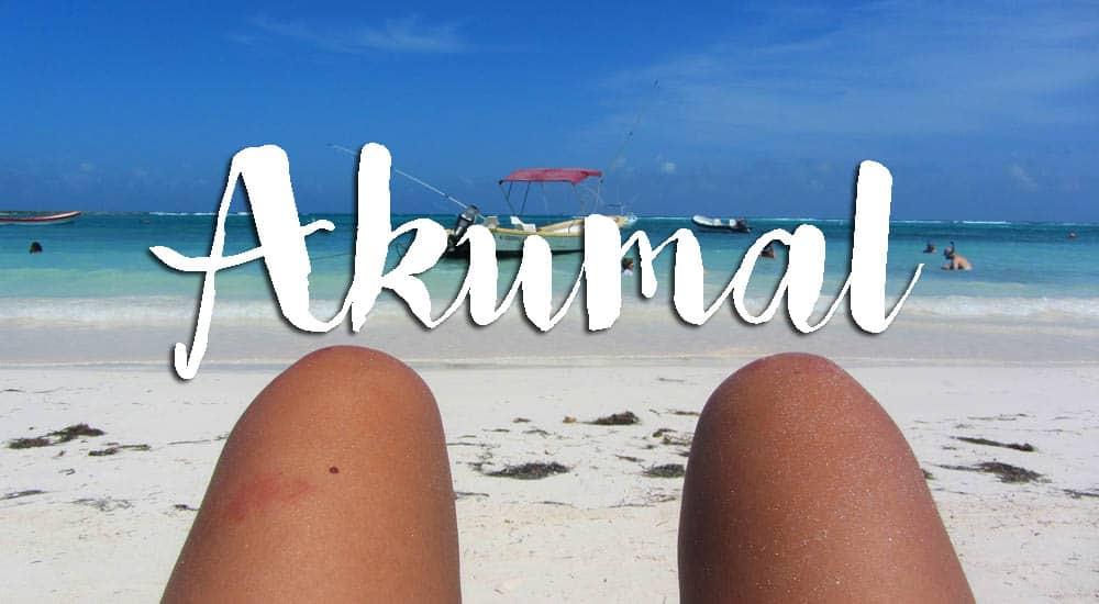 AKUMAL - MÉXICO, visitar a praia das tartarugas