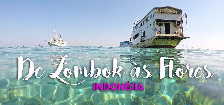 DIAS 64 a 67 - De BARCO DE LOMBOK ÀS FLORES | Indonésia