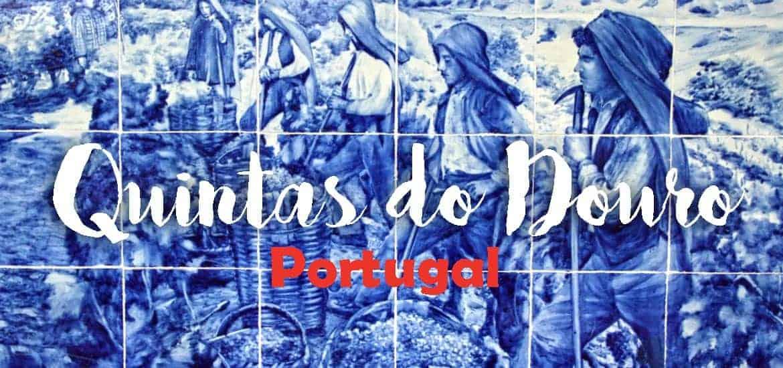 QUINTAS DO DOURO | Que visitar e onde provar o vinho do Porto